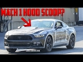 2018/2019 Mustang Mach 1 - Is It Happening?