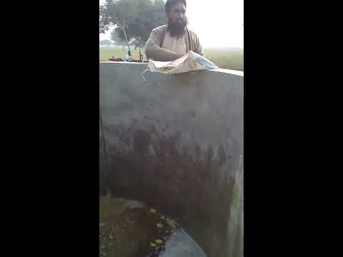 organic fertilizer khanewal  63/10 R pakistan