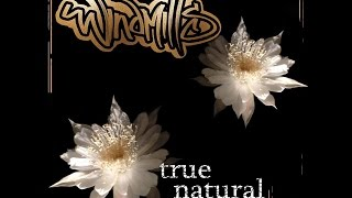 Windmills -True Natural (2016)