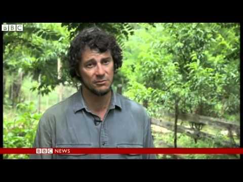 BBC News   Uruguay marijuana move ; illegal ; UN drugs watchdog