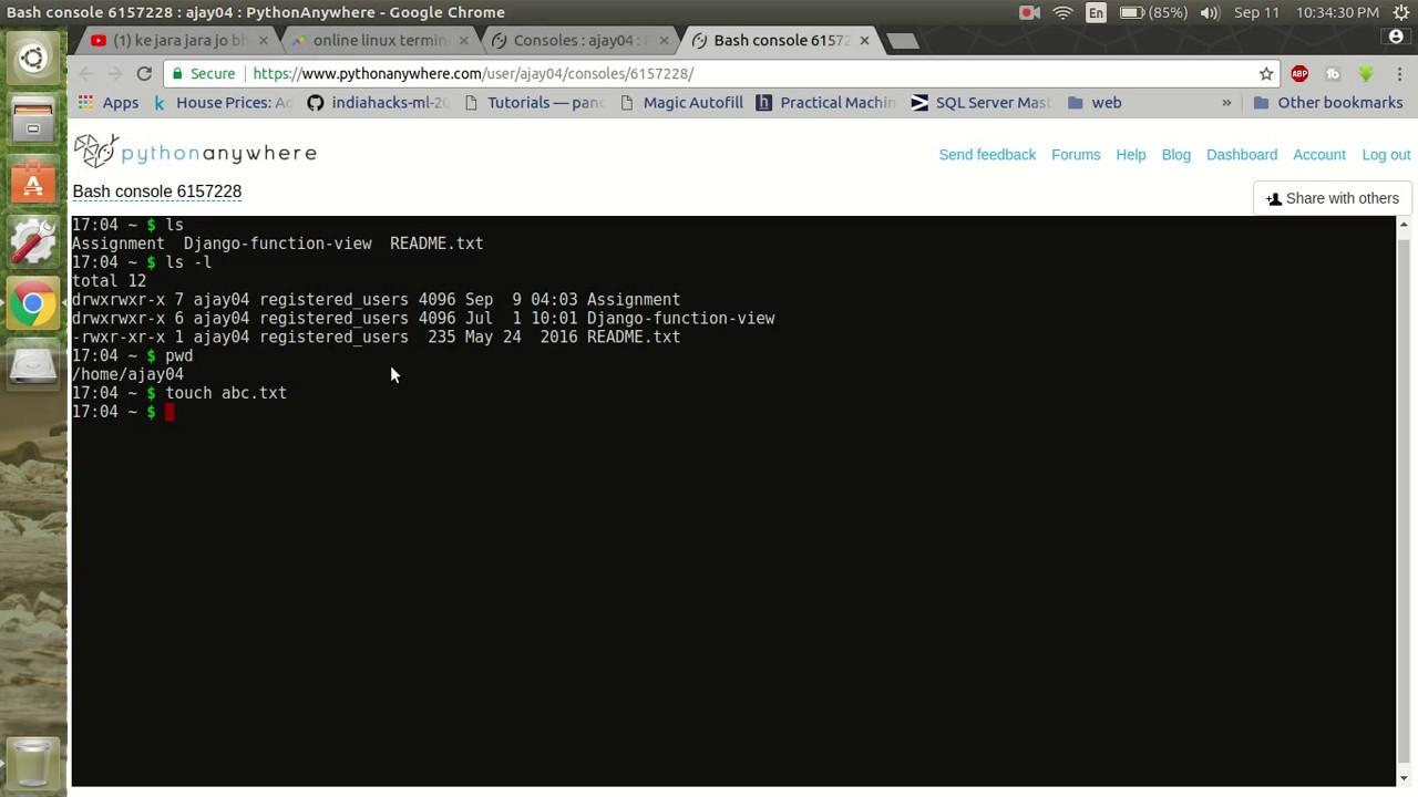 kali linux terminal emulator online