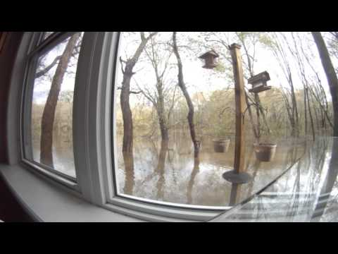 Rancocas Creek Floods(Timelapse)