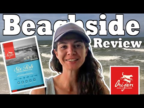 Orijen cat six fishes review: beachside pet food review