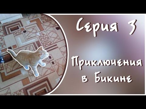 Еще одна история: Приключения в Бикине // Серия 3