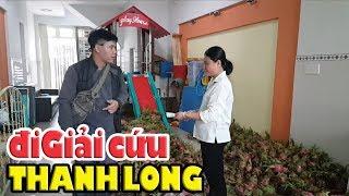 Việt Kiều Thụy Sỹ nhờ giải cứu Thanh Long ở Sài Gòn