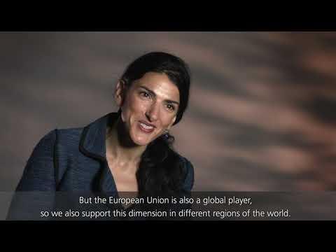 SENDAI FOCAL POINT: EUROPEAN UNION