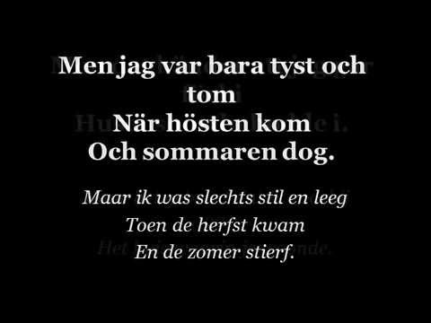 Niklas Strömstedt - Sista Morgonen - Lyrics - Svenska/Nederlands