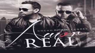 Watch Gocho Amor Real video