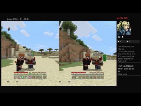 First minecraft video