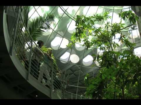 California Academy Of Sciences (HQ)