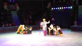Собачья школа! Дрессированные собаки! Цирк в Минске.