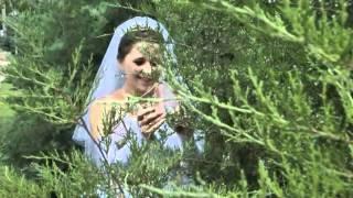 Прогулки жениха и невесты