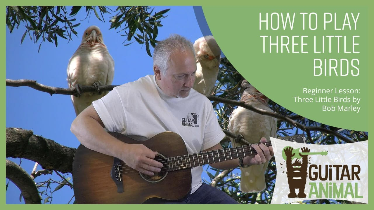 How To Play Three Little Birds By Bob Marley Guitar Animal