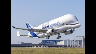 Airbus just flew its incredibly bizarre BelugaXL for the first time, and it looks amazing