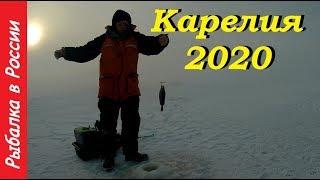 Рыбалка в Карелии 2020 Ловля окуня на блесну и балансир День 4