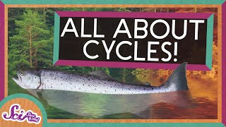 From Seasons to Salmon: All About Cycles! | SciShow Kids Compilation