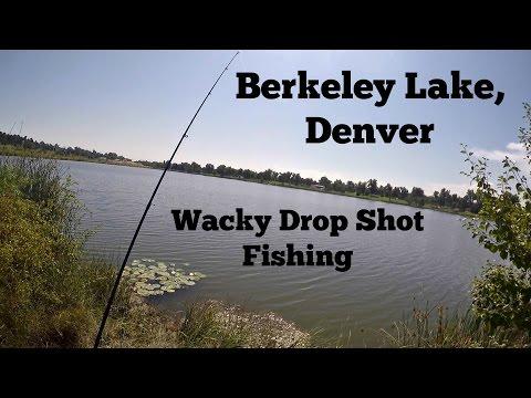 Bass Fishing Berkeley Lake, Denver - Wacky Drop Shot