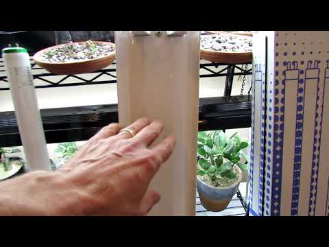 How to Easily & Cheaply Make Your Own Garden Grow-Lights: Kelvin & Lumens, I Take You Shopping!