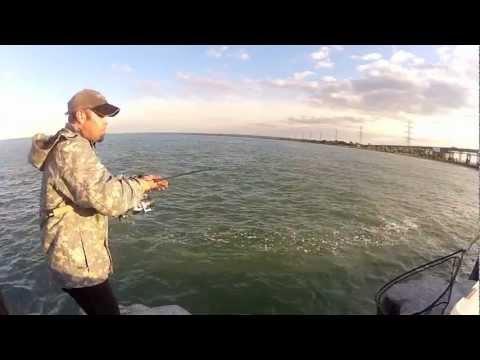 PIER FISHING HAMILTON ONTARIO