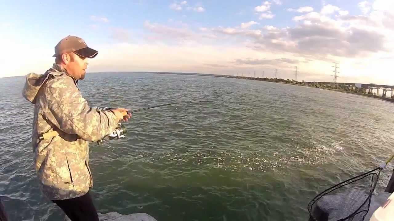 Pier fishing hamilton ontario youtube for Lake hamilton fishing report