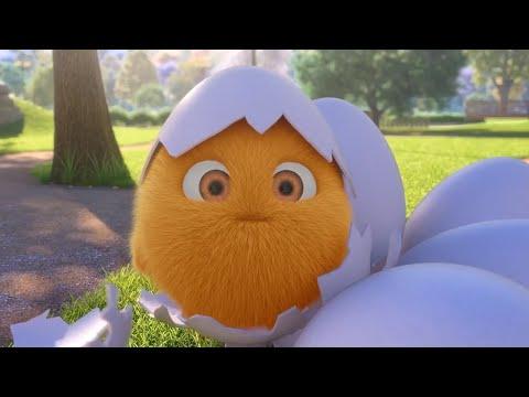 Sunny Bunnies CONEJO POLLITO Dibujos animados para niños WildBrain en Español Videos For Kids