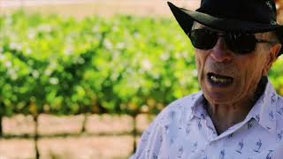 Does region matter to produce a great wine?