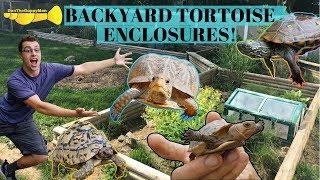 World's GREATEST Turtle Facility -               Backyard Tortoise Tour
