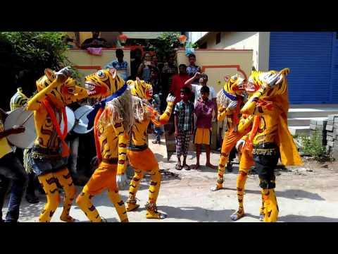 Jagtial jilla tiger