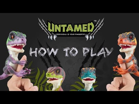 UNTAMED - How to Play