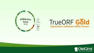 TrueORF GOLD: the only expression-validated cDNA clones