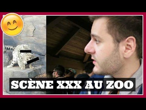 SCÈNE XXX AU ZOO   PlusDePLCloutier thumbnail