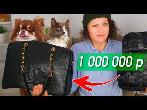 Безумные Товары: ТРУСЫ для собак за 84 000, ГУЧЧИ, ДОМ для кошки за 2 МИЛЛИОНА