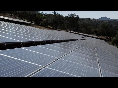 "Notley NDP botch $5M+ ""handout"" to solar panel companies"
