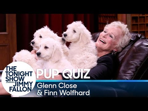Pup Quiz with Glenn Close and Finn Wolfhard