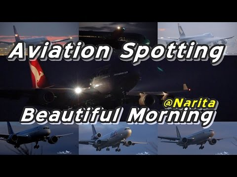 【4K】Beautiful Morning Spotting @Narita Rwy16R December 29 2014