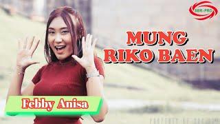 Febby Anisa - Mung Riko Baen - Dj Santuy