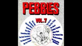 Pebbles Vol.7 - 12 - The Soul Survivors - Shakin