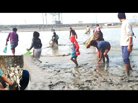 Net Fishing in River ।Good Fishing by Village People । Village Fishing Tv