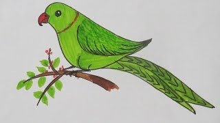 How to Draw smiling Parrot - simple nature drawing - very easy step of drawing for kids