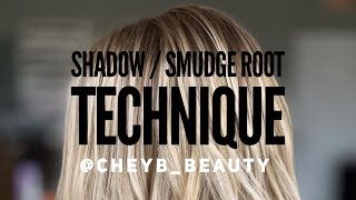 SHADOW/SMUDGE ROOT TECHNIQUE USING REDKEN SHADES EQ | BACK TO THE BASICS SERIES