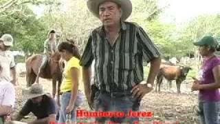 INSEMINACION SENA ARAUCA Miguel Angel Rojas Sarmiento.flv