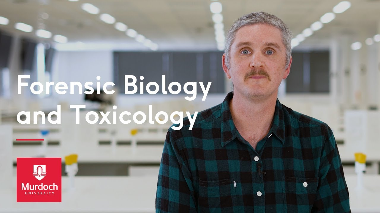 Forensic Biology And Toxicology At Murdoch Youtube