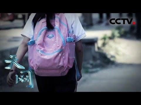 《天网》最后三百米:放学回家的路上 女孩突然失踪    CCTV社会与法
