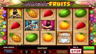 Ninja Fruits™ slot machine by Play