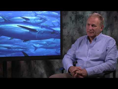Brian Jeffriess, CEO Of Australian Southern Bluefin Tuna Industry Association, On Harvest Strategies