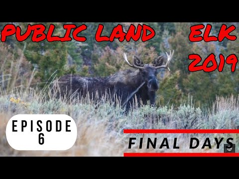 Idaho Public Land Elk Hunting 2019