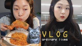 [브이로그] 직장인의 일상 먹방 (feat. 까르보불닭볶음🌶) 고양이랑 혼술🐈🍺