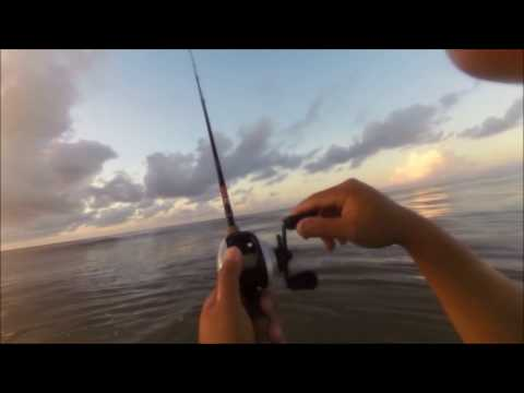 Fishing with Croaker in the Surf- Galveston, Texas