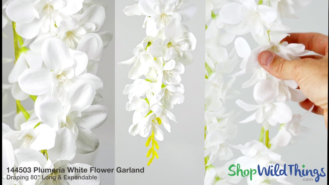 Hanging Floral Garlands for Weddings - ShopWildThings.com - YouTube