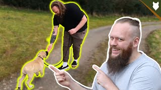 How To Train A Young Puppy To Walk To Heel Perfectly!